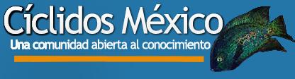 Cíclidos México